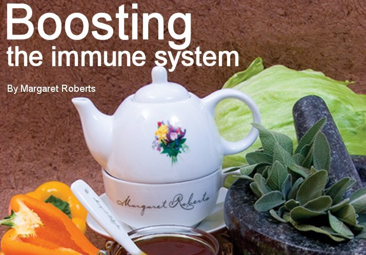 gardener 2005 06 immune 1 Boost immune system