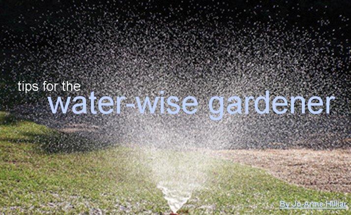 gardener 2005 06 waterwise 1 Waterwise