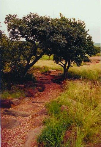 landscape sa 2005 06 lengau 10 Lengau