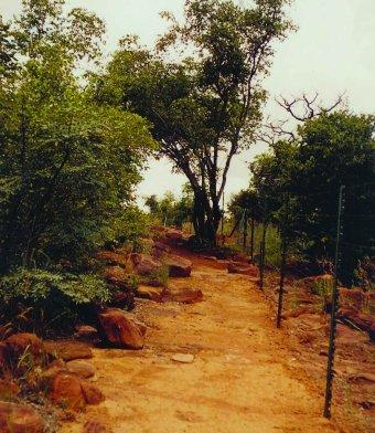 landscape sa 2005 06 lengau 9 Lengau